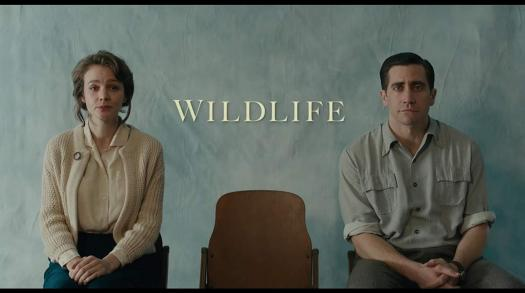 'Wildlife' Review and Paul Dano Interview