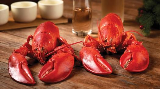 Get Maine Lobster delivers the best sustainably caught Maine lobster across the USA